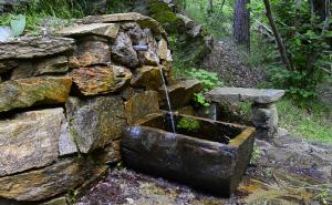 hd-mineral-water-spring-in-forest-old_eoc77z_ke__f0000