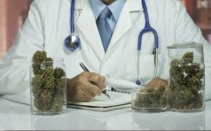 dottore-marijuana