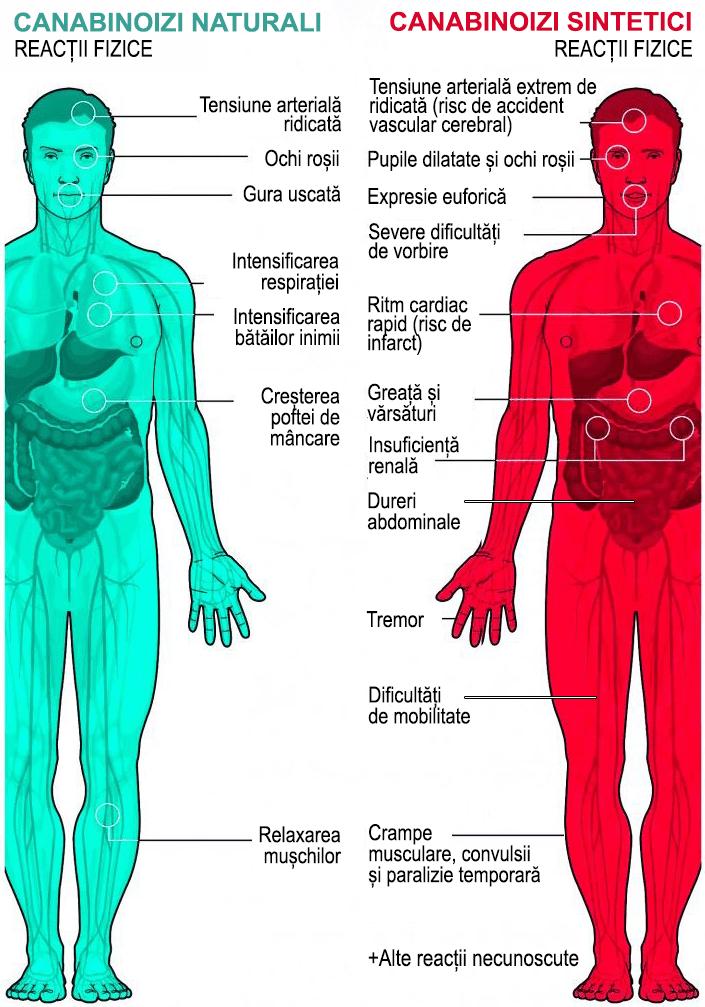 canabis medicinal natural versus canabis medicinal sintetic